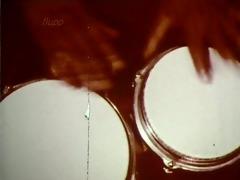 eine geile nacktmusik (love film l 663)
